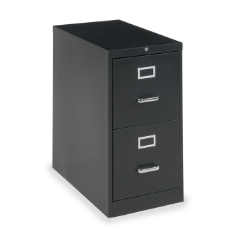 54 Series Vertical Filing Cabinet with Two Letter Sized Drawers